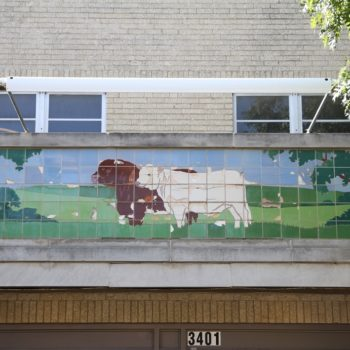 Fort Worth Renews Public Art Conservation Contract (Upcoming Tile Mosaic Conservation Project)