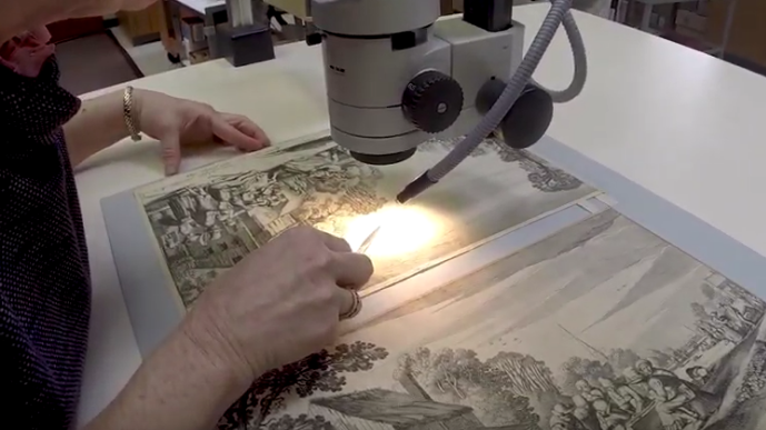 Bank Of America Funds Paper Conservation Project